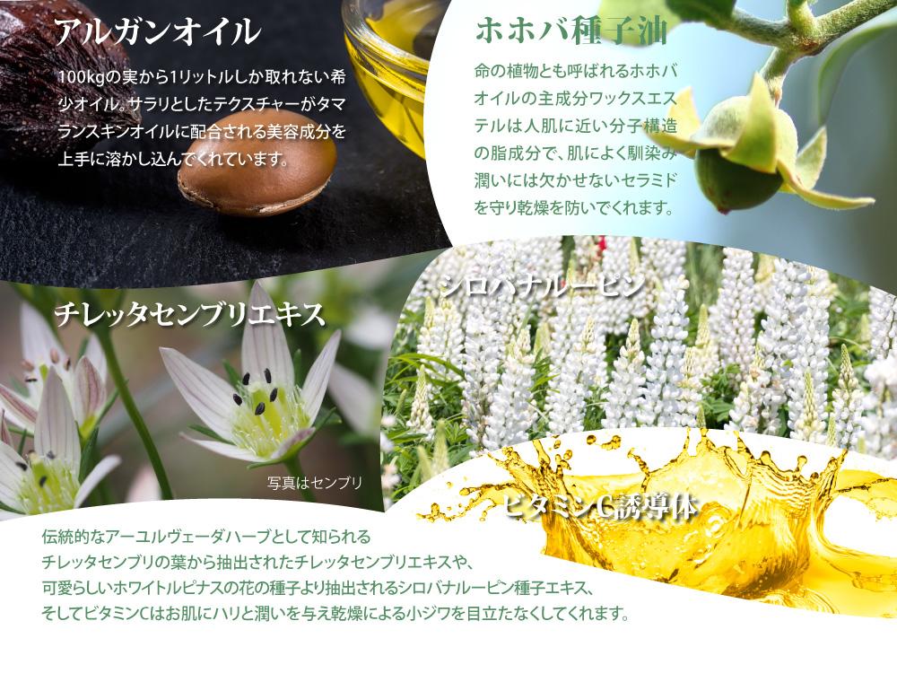 アルガンオイル、ホホバ種子油、チレッタセンブリエキス、シロバナルーピン